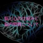 脳と心の仕組みと、心を生み出す脳内物質について。
