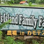 【セブ島】農場Delfin's Island Family Farm in カモテス諸島